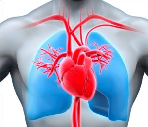 Dr. Varma Heart and Lungs