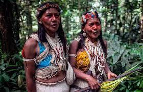 Tsimane people